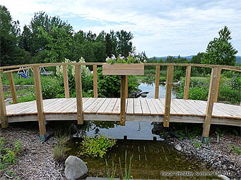 DIY Japanese Bridge - Cheap Japanese Bridge - Ornamental Bridge