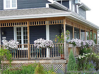 Victorian Rustic Porch Design Idea - Wrap-around Porch
